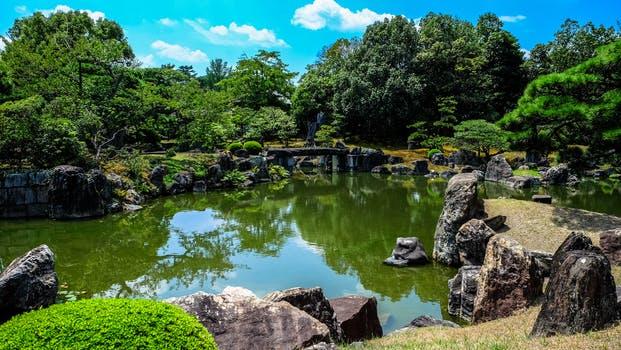 The Garden Of Eden A Biblical Theological Framework Via Emmaus